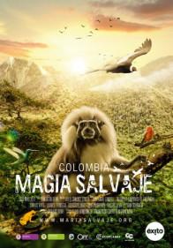 Colombia: Wild Magic